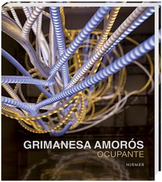 Grimanesa Amorós Ocupante 2016