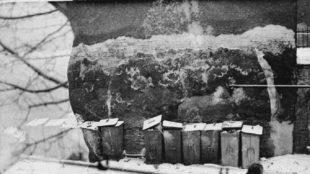 Heimrad Prem und Blick aus dem Atelier in der Klenzestraße, Winter 1962/63 Foto: Monika Prem