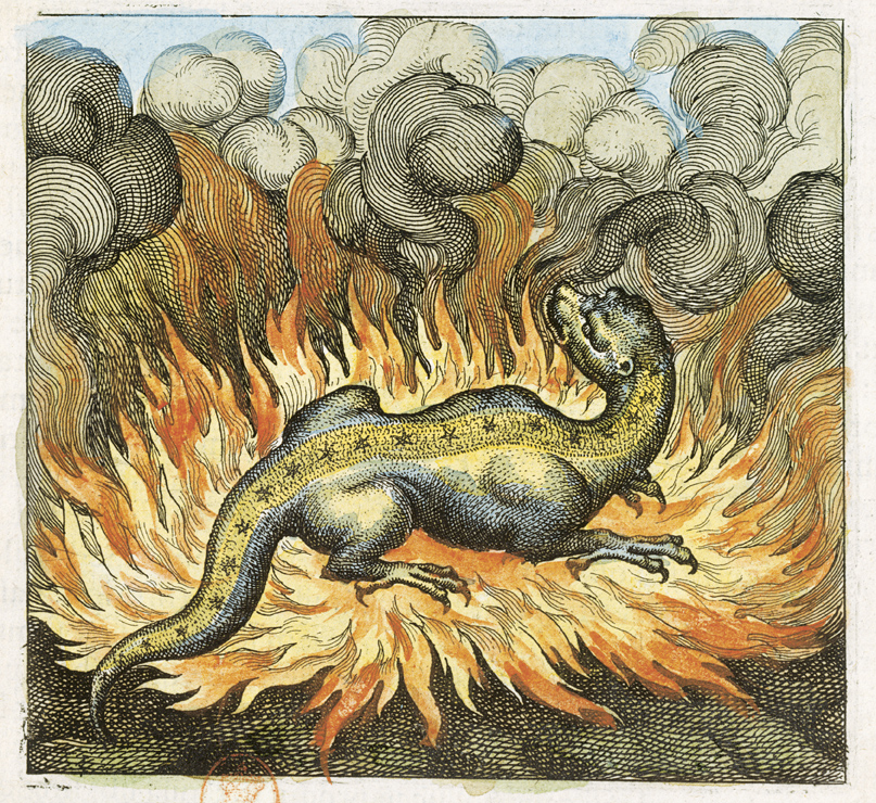 """Emblem XXIX, """"Wie der Salamander lebet im Fewr, also auch der Stein"""", aus: Michael Maier, Atalanta fugiens, Oppenheim 1618"""