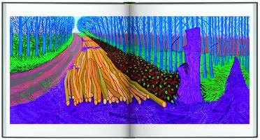 Seiten aus dem Katalogbuch David Hockney, A Bigger Picture, erschienen im Hirmer Verlag