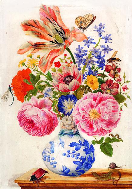 Maria Sibylla Merian, Chinesische Vase mit Rosen, Mohn und Nelken, um 1670–1680, Staatliche Museen zu Berlin, Kupferstichkabinett © bpk / Kupferstichkabinett, SMB / Dietmar Katz